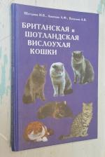 Британская и шотландская  вислоухая кошки.
