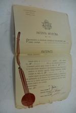 Patenta Aplieciba. / Патентная лицензия.